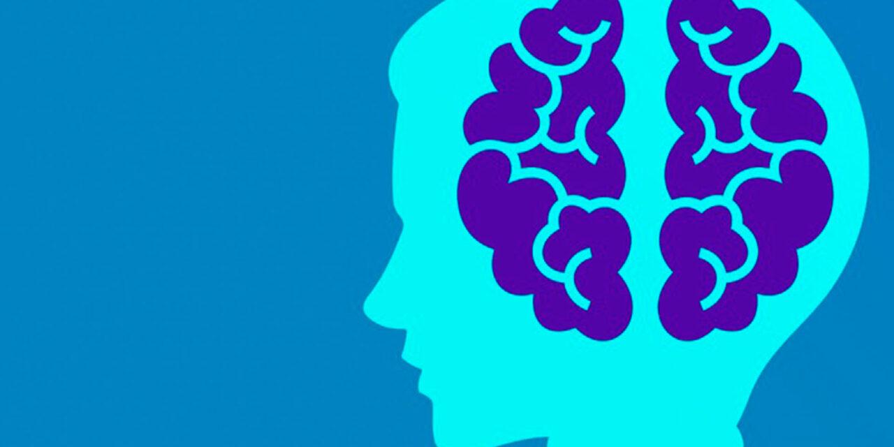 https://www.genitoriepoi.it/wp-content/uploads/2020/10/come-funziona-il-cervello-di-un-bambino-1280x640.jpg