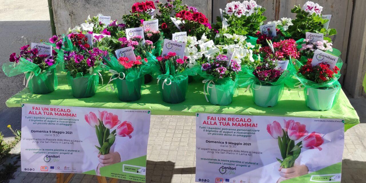 https://www.genitoriepoi.it/wp-content/uploads/2021/05/piantine-fiorite-festa-della-mamma-2021-sorprese-mamme-1280x640.jpg